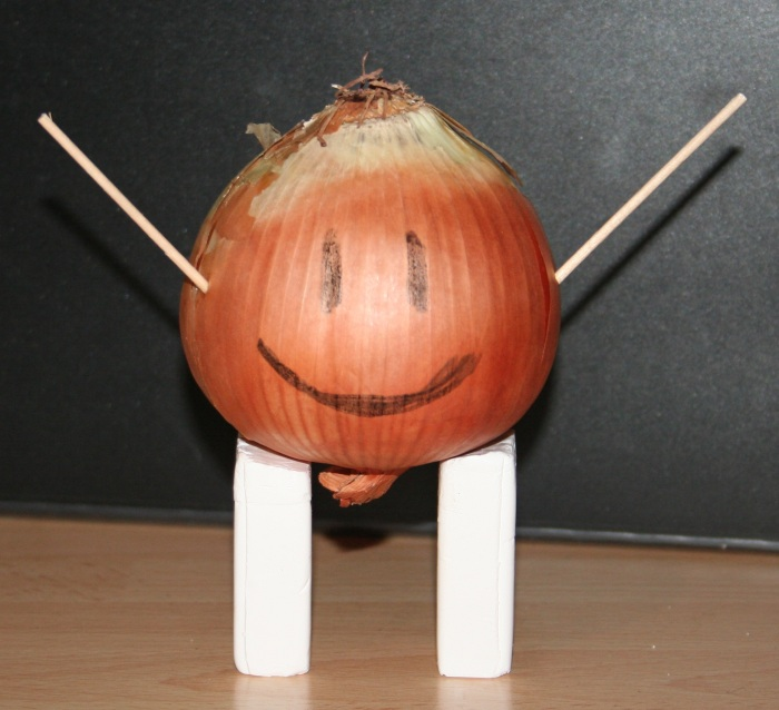 Meet Mr Onion!